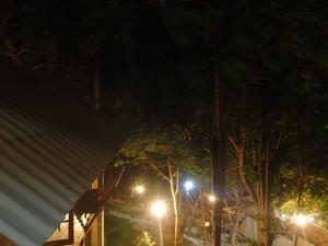 olympus tg-2 - nattbild