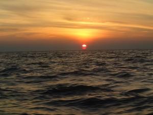olympus t-g2 solnedgång